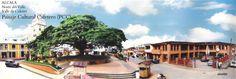 El municipio de Alcalá es uno de los 42 municipios del departamento de Valle del Cauca ubicado en la zona norte a 230 km de Cali Cali, Mansions, House Styles, Cartago, Colombia, Cities, Scenery, Norte, Manor Houses