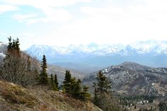 Matanuska Valley from the Eska Falls Trail