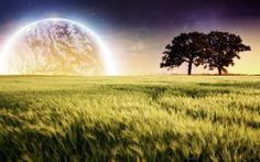WALLPAPERS HD: Planet Farm Trees Landscape