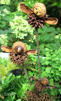 making fairies from natural materials: acorns, sweet gum balls, pine cone segments for wings, use marker for face details