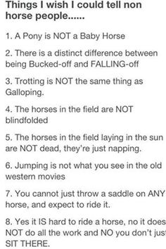 Things I wish I could tell non horse people.