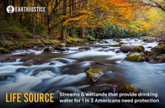 WATER IS LIFE: Roughly 33% of all Americans rely on streams for their drinking water. That's why it's all the more troubling that loopholes in the Clean Water Act have allowed industry to pollute the very sources of our drinking water.  https://secure.earthjustice.org/site/Advocacy?cmd=display&page=UserAction&id=1231  Earthjustice and our environmental allies will be rallying public support to get the White House and EPA to restore clean water protections for our streams and wetlands.