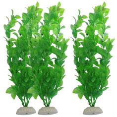 Uxcell 3-Piece Fish Tank Artificial Plants, 10.6-Inch, Green uxcell http://www.amazon.com/dp/B009XNNTUS/ref=cm_sw_r_pi_dp_qBfFvb084S3GB