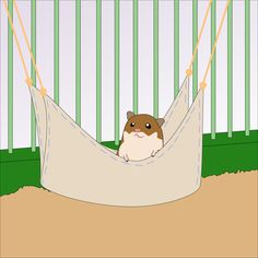 How to Make a Hamster Hammock in 7 Steps