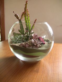Love the layers of sand in this one.  Succulent Terrarium via Etsy.