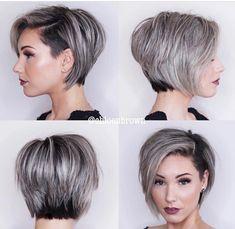 Shorthair cut color