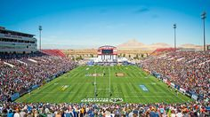 Rugby fans get ready for Boyd Stadium party: Travel Weekly