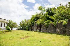 Остров Раиатеа: мараэ Тапутапуатеа и центр полинезийского треугольника Plants, Plant, Planets