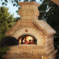 I'd love to make and share use of a wood-fired oven such as this.