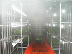 Humidifier inside container plant.