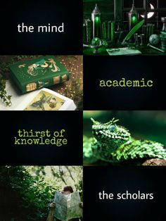 ILVERMORNY HOUSES: ~HORNED SERPENT~ Named by Isolt Sayre after the great horned river serpent that has a jewel set into its forehead; Horned Serpent house is sometimes considered to represent the mind of a witch or wizard. It is also said that Horned...