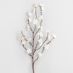 A classic subject of Eastern poetry and paintings, the plum blossom brings artistic elegance to your indoor scenery. Our faux White Velvet Plum Blossoms with wired multi-branch stems with fabric flowers provide realistic looks that last.