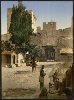 İstanbul'un ilk renkli fotoğrafları, 1895 yılında çekilip renklendirilen bu fotoğrafların İstanbul'un bilinen ilk renkli fotoğrafları olduğu tahmin ediliyor. ABD merkezli bir kartpostal şirketi tarafından 1895 yılında çekilerek renklendirilen İstanbul fotoğrafları ortaya çıktı. Osmanlı'da yaşamı yerinde görmek için birçok gezgin bu büyüleyici şehri ziyaret ederek seyahatnameler yayınladı. posta kartlarında kullanma fikri ise ilk kez Detroit Publishing Company adlı Amerikan şirketinindi.