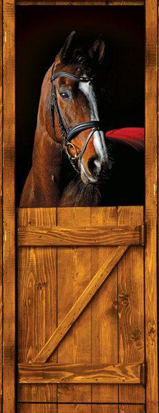 1000 Images About Horse Door Mural On Pinterest Door