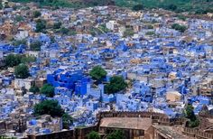 "The Majestic Colors of Jodhpur – ""The Blue City"""