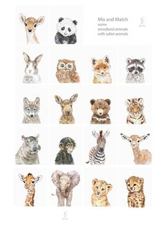 Wild Baby Animals Portrait Set of Woodland Nursery Art, Woodland animals print set, Animal. - Wild Baby Animals Portrait Set of Woodland Nursery Art, Woodland animals print set, Animal print - Woodland Nursery Prints, Forest Nursery, Safari Nursery, Animal Nursery, Nursery Art, Nursery Decor, Bunny Nursery, Babies Nursery, Deer Nursery