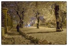 #234 Discover a dreamy Vukovar in deep snow around Dvorac Eltz.  Photo by Vanja Vidaković Photography - Vukovar, Croatia