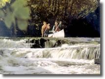 Rent a canoe and go down the Harpeth - there is an hour route recommended for children/beginners.