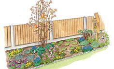 Ab März lösen in unserem Beetvorschlag blaue Traubenhyazinthen (1) (Muscari armeniacum) und violette Küchenschellen (2) (Pulsatilla vulgaris) die gelben Winterlinge (Eranthis hyemalis) als frühe Nahrungsquelle für Wild- und Honigbienen ab. Die dunkelrote Lenzrose 'Red Lady' (3) (Helleborus x orientalis) startet ebenfalls zeitig in die Gartensaison. Bei ausreichender Feuchtigkeit gedeiht sie auch an sonnigen Plätzen. Kletterrose und Sommerflieder beginnen nun mit dem Austrieb. Anfang April…