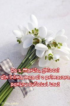De 1 Martie, ghiocei din inima mea și o primăvară pentru sufletul tău!