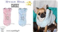 Manteau chien Star Boa Puppy Angel https://www.cupofdog.fr/vetement-chihuahua-manteau-petit-chien-xsl-246.html