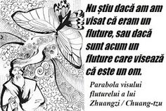 Parabola visului fluturelui a lui Zhuangzi / Chuang-tzu Chuang Tzu, Mai, Illusions, Memes, Astrology, Meme, Optical Illusions