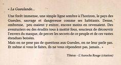 Aurochs Rouge - Chimeterre T1 par Tibéon Citation 02