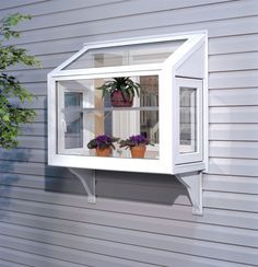 The Garden (Greenhouse) Window.