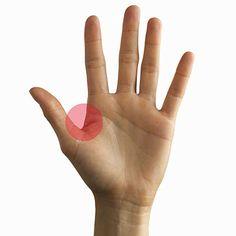 Apriete aquí. El lugar carnosa entre el dedo índice y el pulgar se llama el lugar hoku en la medicina tradicional china. La aplicación de presión firme allí por tan sólo 30 segundos puede reducir el estrés y la tensión en su cuerpo superior.