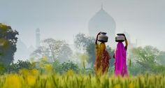 Women carrying water jugs near Taj Mahal, Agra, India. Copyright: Peter Adams/ Corbis.