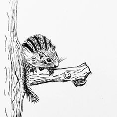 Daily drawing 70  A chipmunk attempt   #practice #ink #inkdrawing #dailydrawing #drawing #chipmunk http://ift.tt/2h6sKrg Daily drawing 70 A chipmunk attempt  practice ink inkdrawing dailydrawing drawing tumblr chi