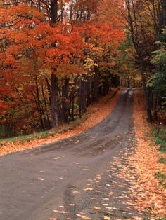 size: Photographic Print: Country Road in Autumn, Vermont, USA Poster by Charles Sleicher : Artists