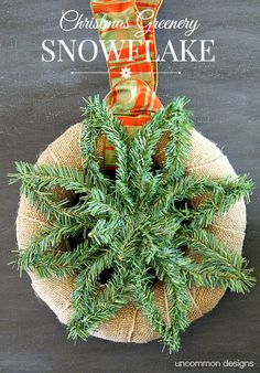 Create a snowflake that never melts! This Christmas Greenery Snowflake is beautiful and simple. Full instructions via Uncommon Designs. #YahooDiy