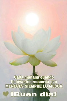 Good Day Quotes: Buen día - Quotes Sayings Morning Love Quotes, Good Day Quotes, Morning Greetings Quotes, Quote Of The Day, Morning Messages, Good Day Wishes, Happy Wishes, Good Night I Love You, Hug Quotes