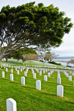 Cabrillo National Monument, Military Cemetery.  Point Loma, San Diego- overlooking Coronado Naval Air Station