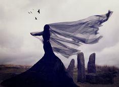 Portfolio • Nicola Taylor Photographer
