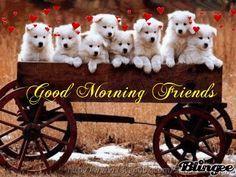 Good Morning Friends morning good morning morning quotes good morning quotes…