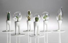 Domsai Terrarium By Matteo Cibic modern indoor pots and planters