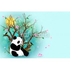Turquoise Greeting Card With Panda