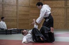Aikido Lehrgang des Österreichischen Aikidoverbands im Budokan Wels, Mai 2015 - AikidoJo