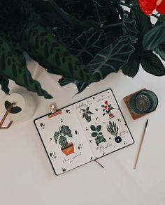 """Tanja von Die Handletterei on Instagram: """"#handletteringmeetsillustration #plantjournal >>> Ich glaube unseren #pflanzen ging es noch nie so gut 🙈... hörte gibt's wieder…"""""""