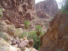 """Parque Nacional """"El cajón del Diablo"""", Sonora."""