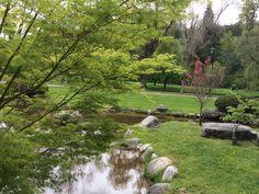 Popson Park Vernon BC
