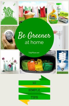 10 Simple Eco-Friendly Tips to Green Your Home. More info at TidyMom.net #eco friendly pawpods.com #pets