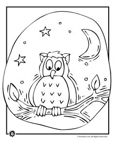 Owl Coloring Pages 614