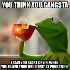 Gangster probation meme