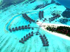 Loger dans un palmier I #Maldives I