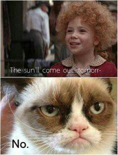 """Grumpy Cat Says """"NO""""."""