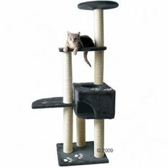 Medium Cat Trees - Trixie Alicante Cat Tree: Free P on orders of £19+ at zooplus