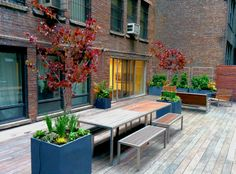 Clean and modern midtown Manhattan #terracegarden from Greenery NYC.  A perfect oasis to relax and entertain.